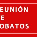 Protegido: Reunión Lobatos